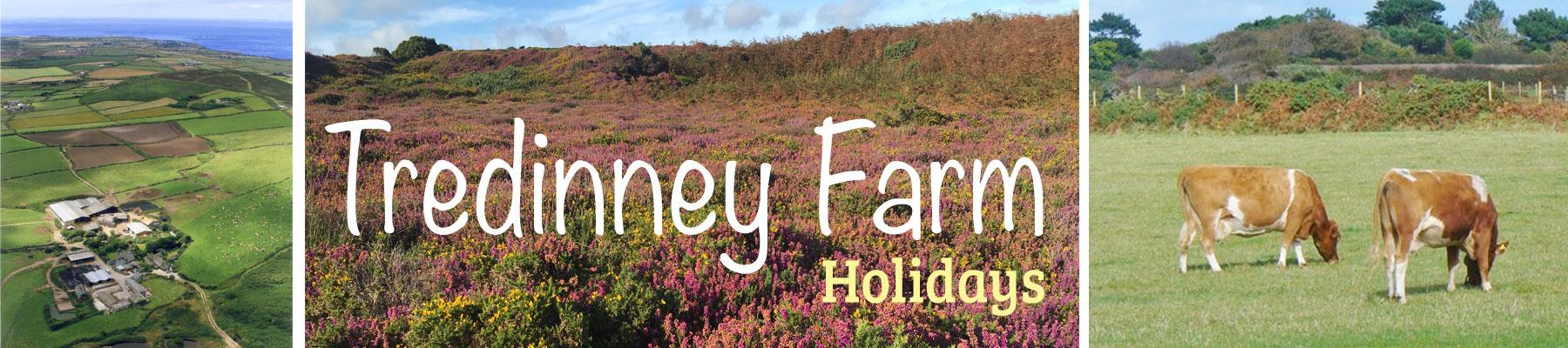 Tredinney Farm Holidays